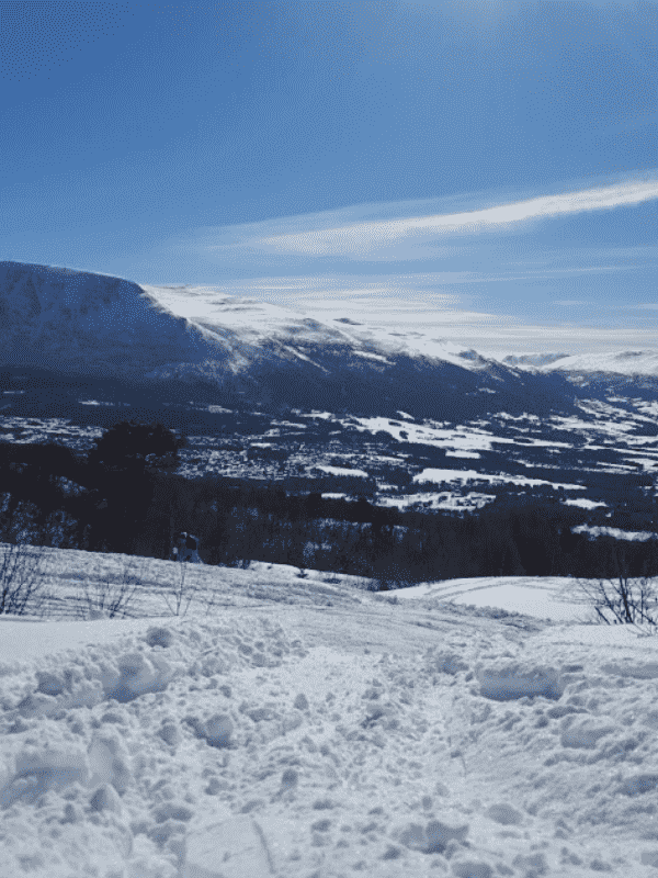 Oppdal2 optimized