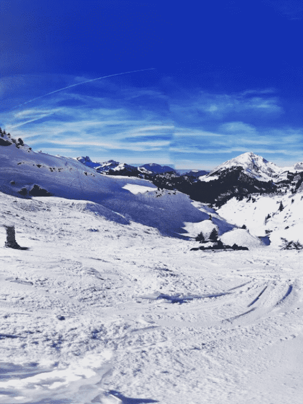 Chatel2 optimized