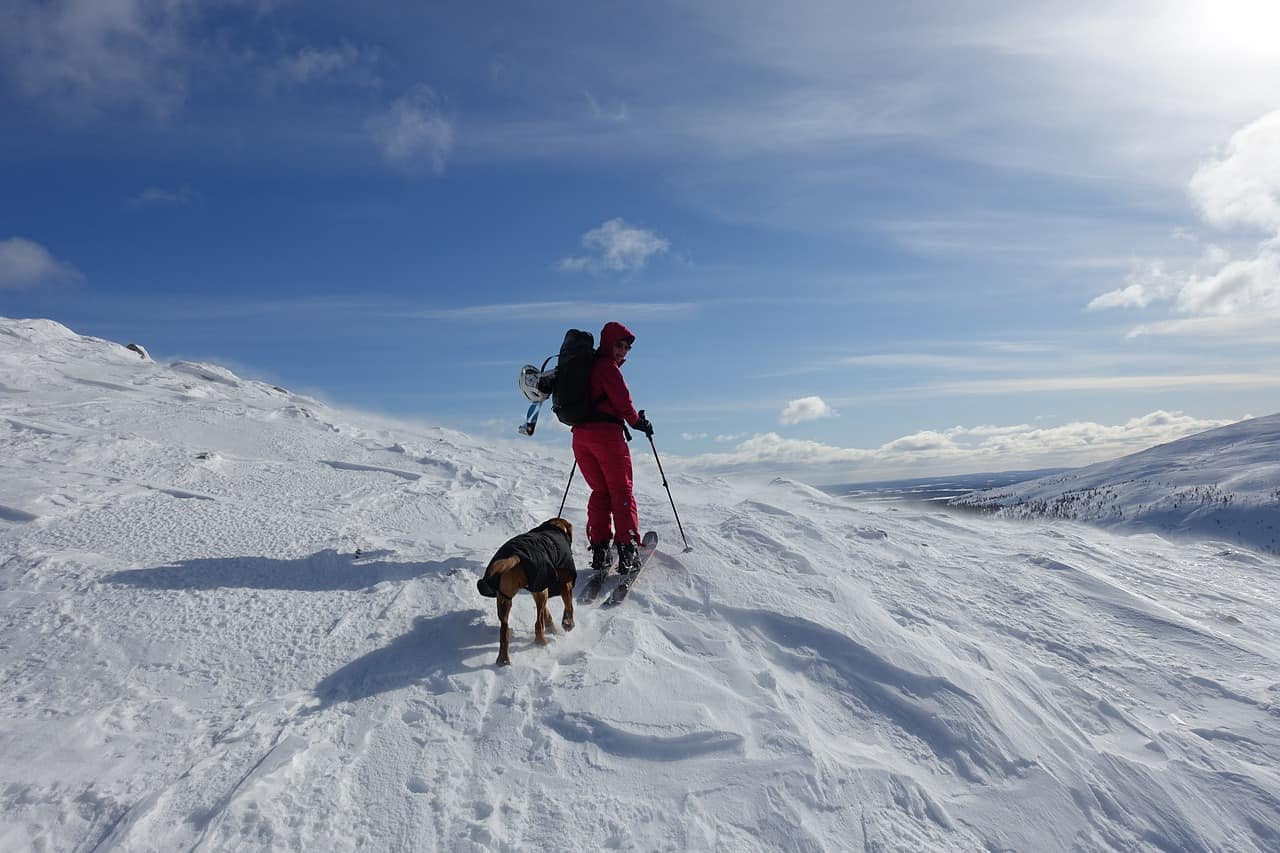 downhill skiing 3436087 1280