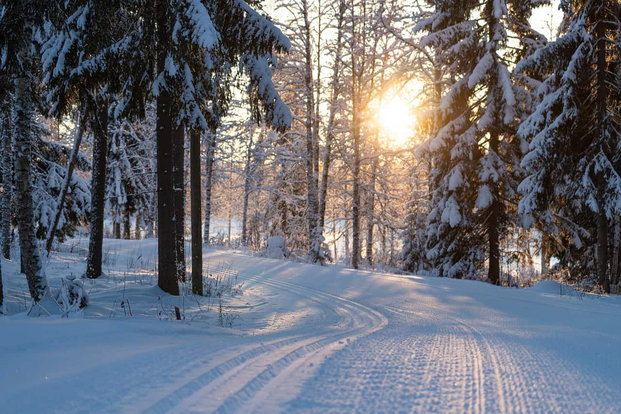 ski tracks 4763028 1280
