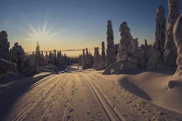 Skier blog